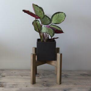 Puidust lillepoti alus Loko